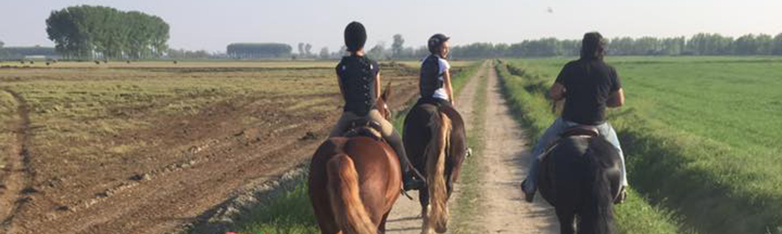Passeggiate a cavallo in lomellina sulla via Francigena Novara Milano Pavia