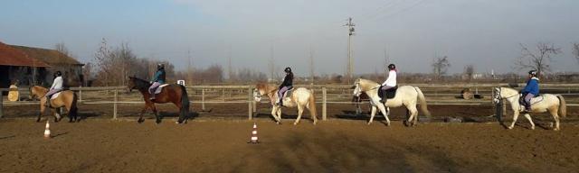 Scuola di Equitazione la Cascina di Carola