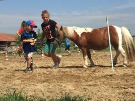 Giochi con i pony