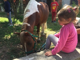 Bimbi e pony alla fattoria didattica la Cascina di Carola