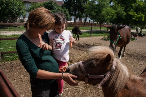I bimbi incontrano il pony