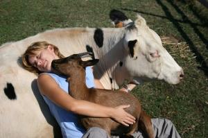 Gli animali della fattoria didattica la Cascina di Carola