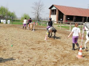 Impariamo i pony games